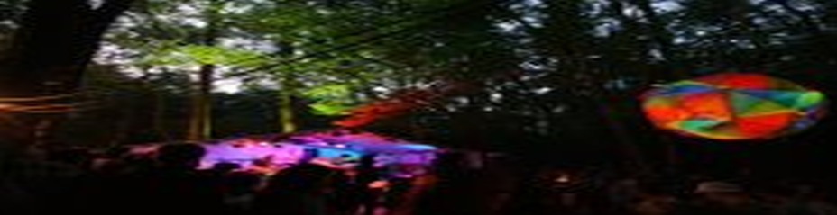 WIN! A PAIR OF TICKETS TO In The Woods Festival!