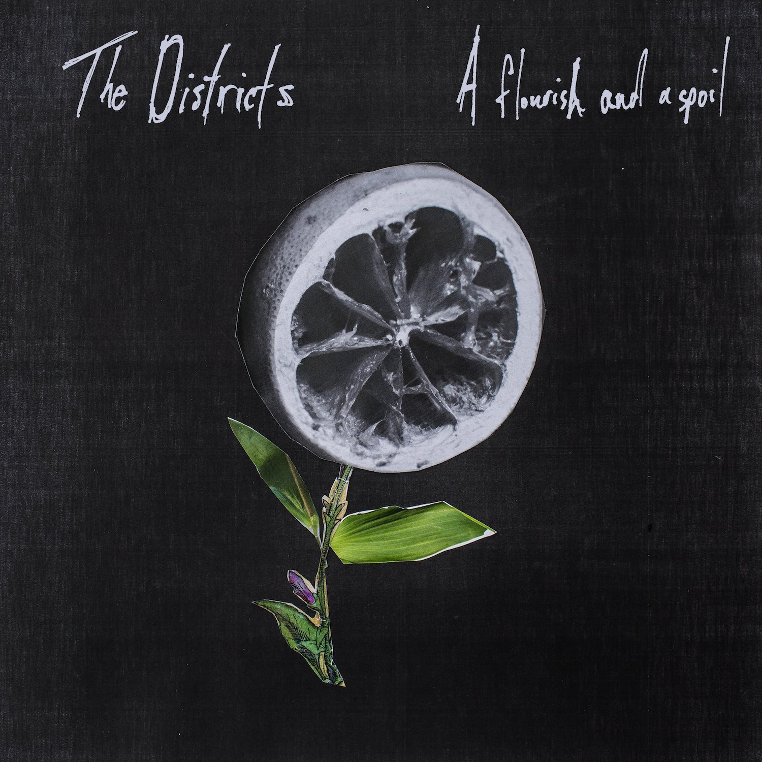 The Districts – A Flourish And A Spoil (Fat Possum Records)