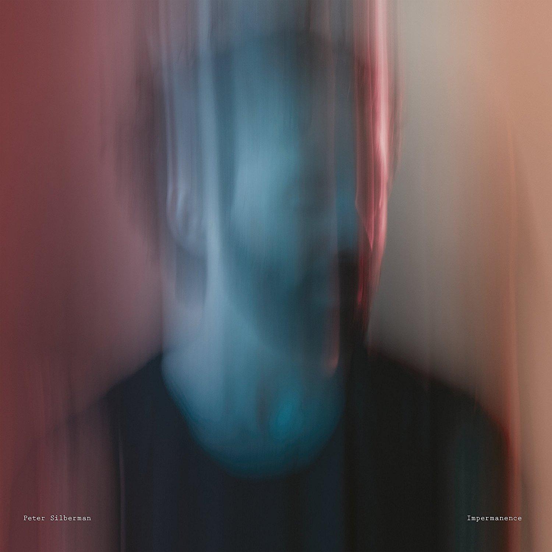Peter Silberman  – Impermanence (Transgressive Records)