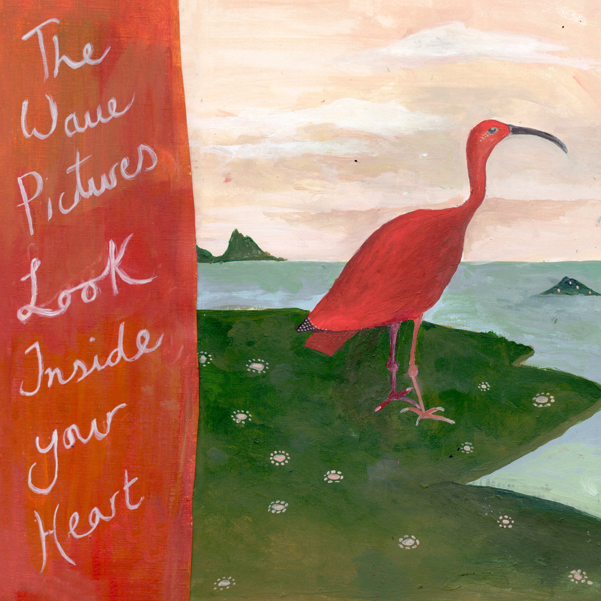 The Wave Pictures – Look Inside Your Heart (Moshi Moshi)