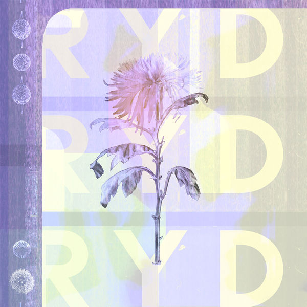 RYD – RYD (37 Adventures)