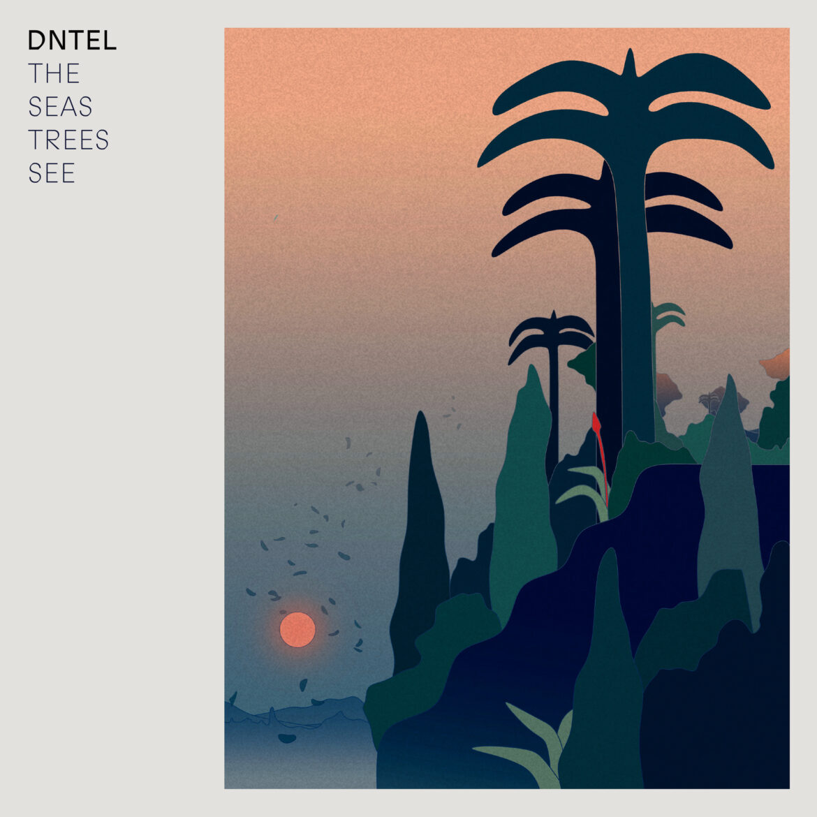 Dntel – The Seas Trees See (MORR Music)